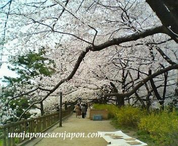 sakura-unajaponesaenjapon.com