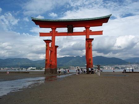 厳島の画像 p1_35