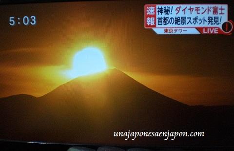 diamond fuji-2013-japon-ダイヤモンド富士
