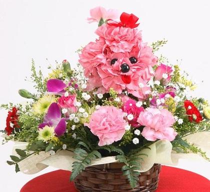 dia de la madre una japonesa en japon - 母の日