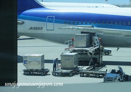 aeropuerto de naha okinawa japon 6