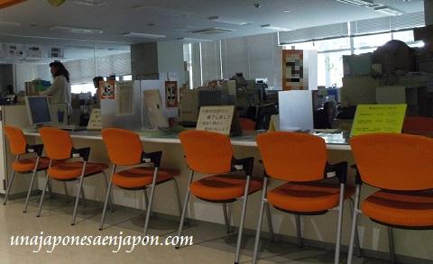 ayuntamiento de naha okinawa japon ecologia 1