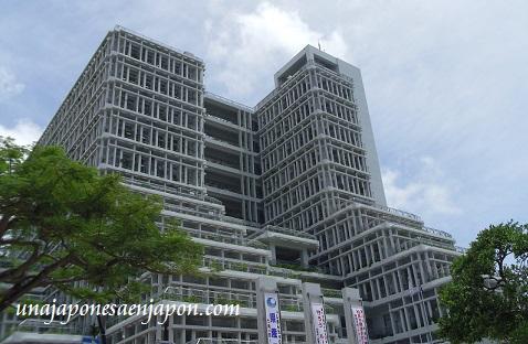 ayuntamiento de naha okinawa japon ecologia 11