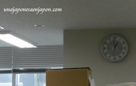 ayuntamiento de naha okinawa japon ecologia 8