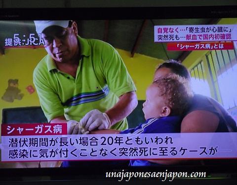 enfermedad de chagas en japon 3