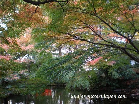 jardin japones hotel new otani tokyo japon