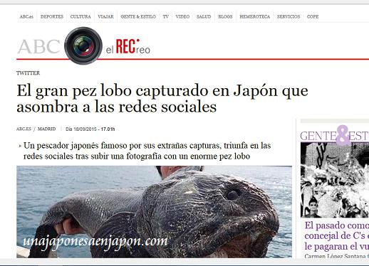 pez lobo hokkaido japon 4