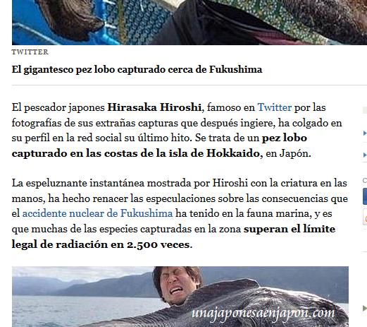 pez lobo hokkaido japon 5