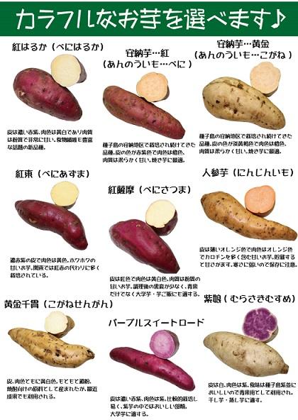 Variedades de batatas en Japón