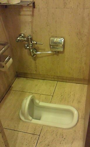 inodoro vater servicio wc japon