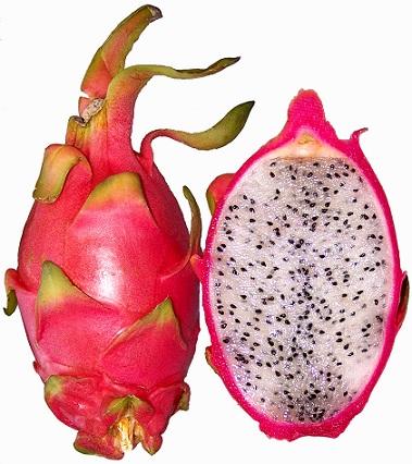 fruta del dragon Pitahaya 8