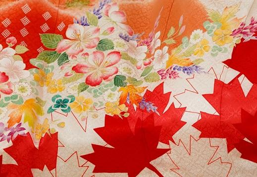 olimpiadas 2020 tokyo kimono project canada japon 3