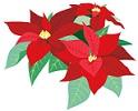 diciembre-flor-de-nochebuena-japon