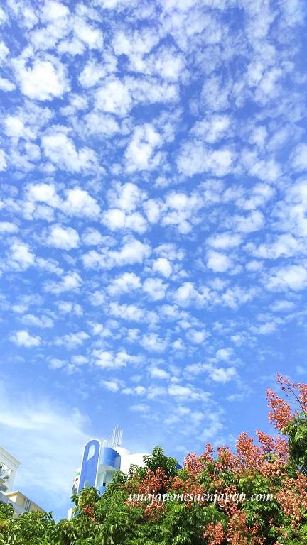 nubes-de-otono-okinawa-12-fotos-2016-japon