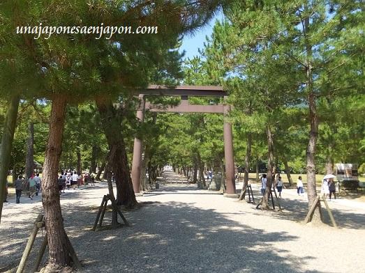 santuario-izumo-taisha-shimane-piedras-camino-japon